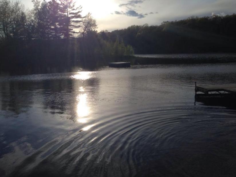 Lake 2016